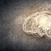 cerveau-machine